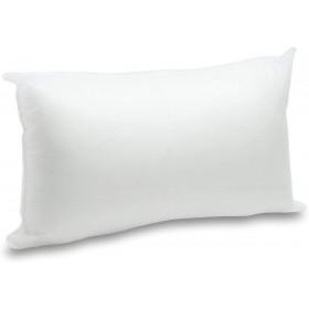 Riempimento cuscino 50X30cm